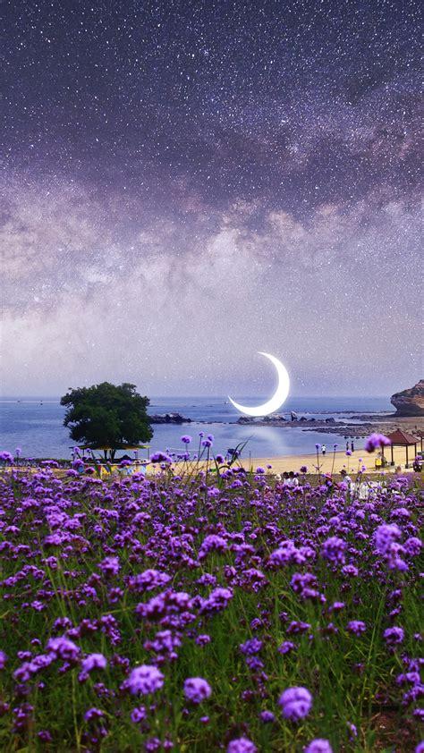 wallpaper surreal moon scenery purple flowers seascape