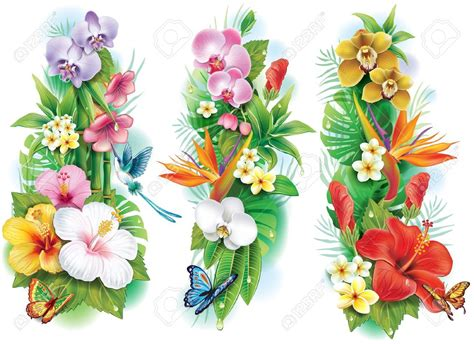 stock photo tattoos tropical flower tattoos tropical