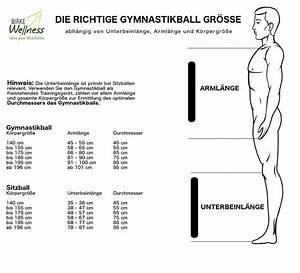 Gymnastikball Größe Berechnen : gymnastikball bungen die richtige gr e birke wellness ~ Themetempest.com Abrechnung