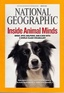 National Geographic Magazine Inside | www.imgkid.com - The ...