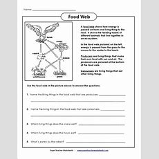 Energy Pyramid Worksheet Homeschooldressagecom