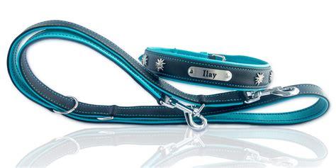 Hunde Halsband Und Leine