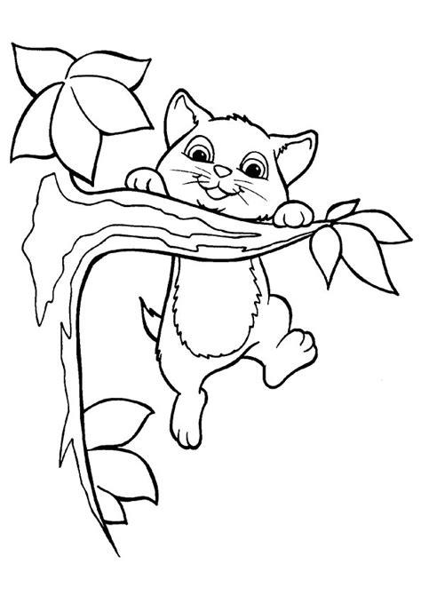 disegni da colorare di gattini piccoli disegni di gatti da colorare e stare gratis gattino