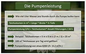 Wasserfall Pumpe Berechnen : die passende teichpumpe tests und auswahlkriterien ~ Themetempest.com Abrechnung