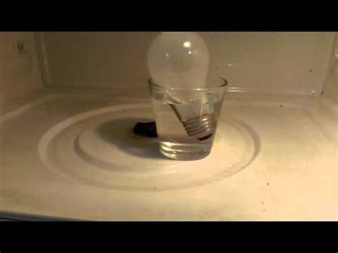 how to light a bulb in a microwave science experiment