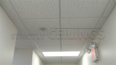 Certainteed Ceiling Tile Bet 197 by 2x4 Drop Ceiling Tiles Quotes