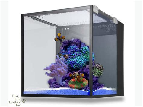 saltwater aquarium all in one innovative marine all in one aquarium saltwater fish tank 38 gal