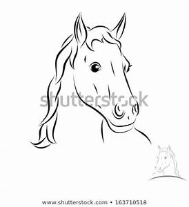Stylized Horse Head. Front View. Black Outlines - Vector ...