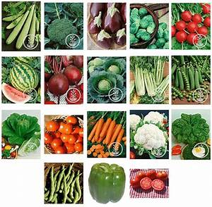 Garden Heirloom Vegetable Seeds Prepper by HeirloomSeeds2U