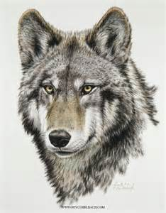Drawings of Wolves Heads