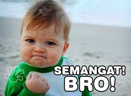 Gambar2 Lucu buat Komentar Facebook Paling Gokil Kochie Frog