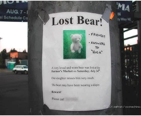 hilarious lost   signs