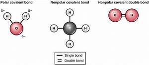 Chemical Bonds – Principles of Biology: Biology 211, 212 ...