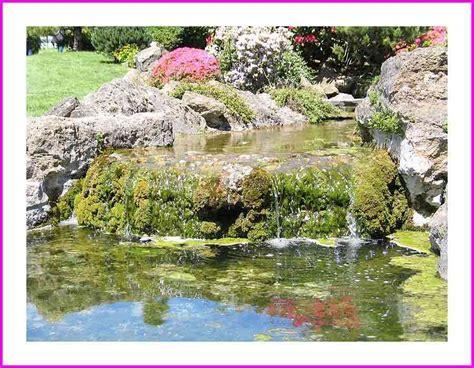 Japanischer Garten Ludwigsburg by Japanischer Garten Foto Bild Landschaft Garten