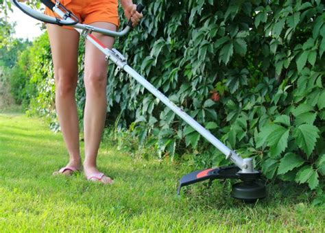 weed eater wackiest buying guide