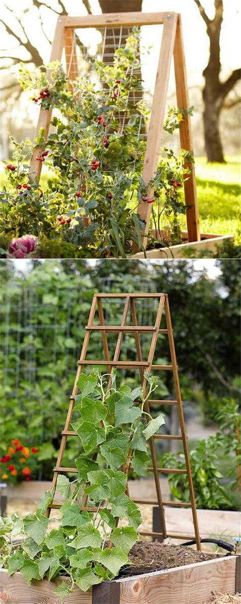 A Frame Garden Trellis by 21 Easy Diy Garden Trellis Ideas Vertical Growing