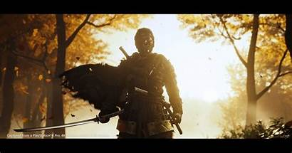 Tsushima Ghost Samurai Open Fox Honor