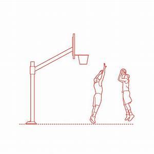 Kobe Bryant Dimensions  U0026 Drawings