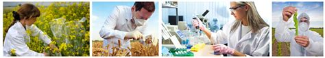 Careers In Agriculture & Forestry  Environmentalscience. Aarp Group Health Insurance Domain Names 1. How To Finance A Business Wythe Hotel Rooftop. Opt Out Email Marketing Private Equity Brazil. Best Online Colleges In California. Active Directory Reporting Software. Medicare Advantage Plans Virginia. Movers In Myrtle Beach Msu Course Description. Holiday Season Greeting Vascular Surgery Jobs