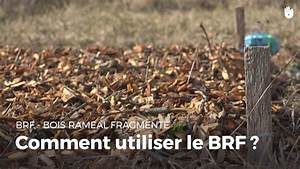 Pate A Bois Comment L Utiliser : comment utiliser le brf bois ram al fragment ~ Dailycaller-alerts.com Idées de Décoration