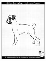 Coloring Boxer Dogs Dog Often Weekly Check Added Breed sketch template