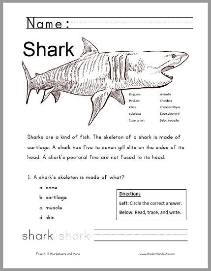 All Worksheets » Shark Worksheets  Printable Worksheets Guide For Children And Parents