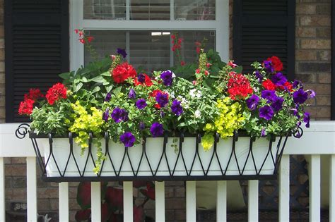 medallion window box or liner hooks lattice blog
