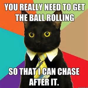 cat memes cybergata meme kittehs business cat or is that bizness