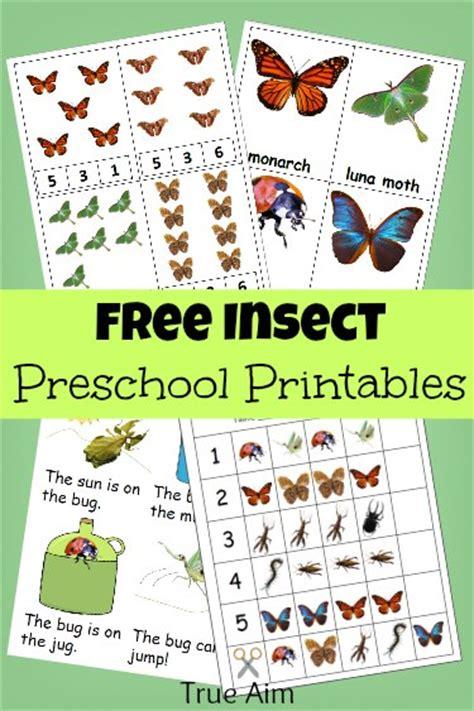Free Bug Minipack Preschool Printables  Free Homeschool Deals