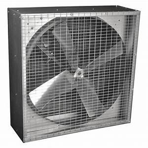 dayton belt drive less motor agricultural exhaust fan 3 With agricultural exhaust fans