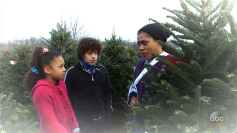 free christmas trees for low income families family cannot afford tree what would you do wwyd