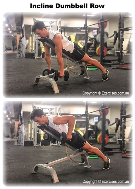 incline row dumbbell exercises reps sets