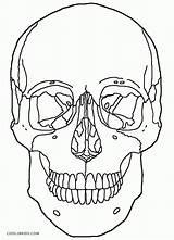 Coloring Skull Crossbones Mexican sketch template