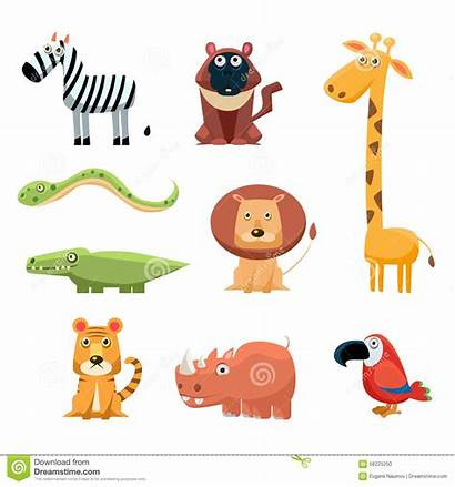 Animals Cartoon African Clip Fun Colored Vector