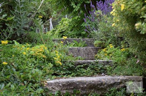 Appell An Hobbygärtner Auf Giftspritze Im Garten Verzichten