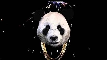 Panda Dope Wallpapers Meme Vogue Song