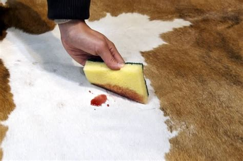 How Do You Clean Cowhide Rugs by How To Clean A Cowhide Rug Quora