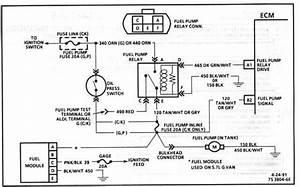 Wiring Diagram 1988 Chevy S10 2 5 Pickup  U2013 Readingrat Net