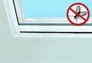 Insektenschutzrollo Für Dachfenster : dachfenster von heim haus fensteraustausch leicht gemacht ~ Watch28wear.com Haus und Dekorationen
