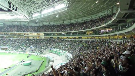 palmeiras wallpapers  images