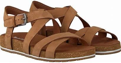 Timberland Waves Malibu Ankle Omoda Sandalen Sandals