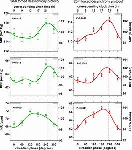 Blood Pressure Graph Existence Of An Endogenous Circadian Blood Pressure Rhythm