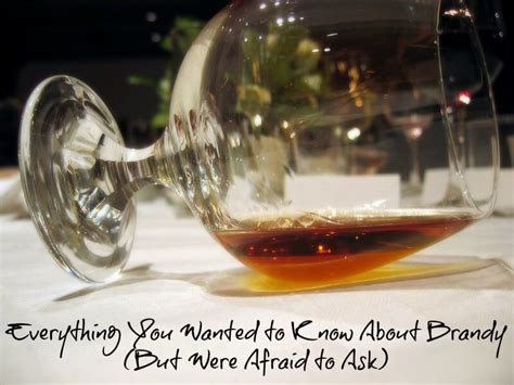 Everything You Wanted To Know About Brandy (but Were