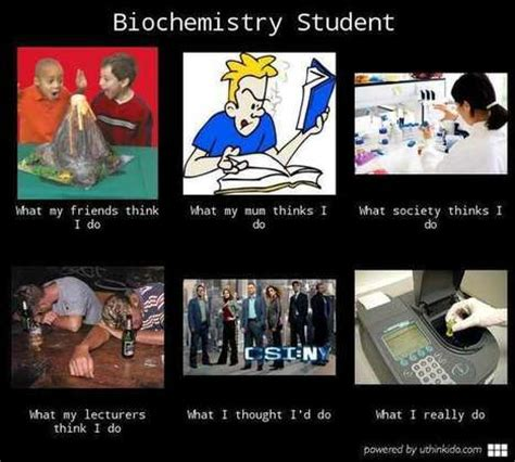 What I Do Meme - what my lecturers think i do in what i really do scoop it
