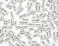 grammar worksheets  activities  primary school