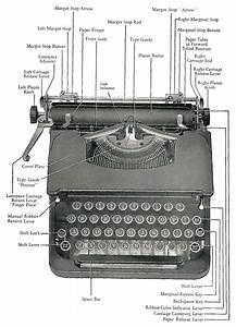 Anatomy And Physiology Of A Typewriter