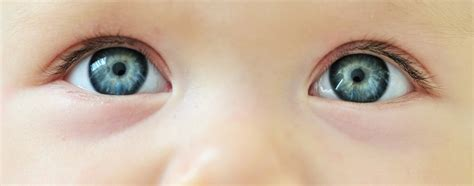 when can babies see color what colors can newborn babies see messagetoeagle
