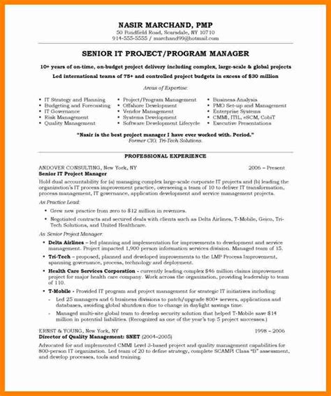 9 business project exles buyer resume