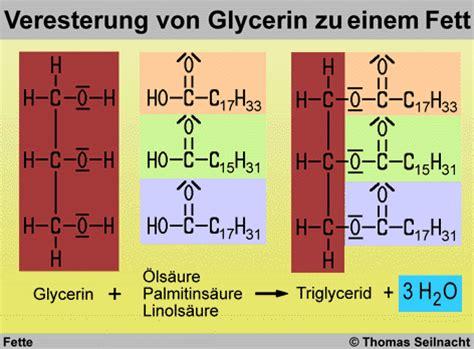 Aufbau fette chemie