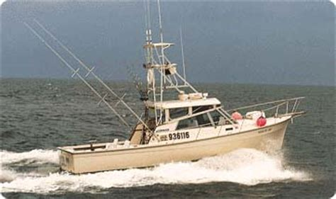 Trophy Boats For Sale Long Island Ny by Montauk Fishing Charters Shark Fishing In Montauk